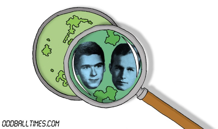 A cartoon of a Petri dish with Ted Bundy and George Hebert Walker Bush inside. By Oddball Times