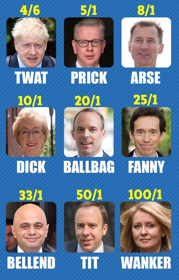 Parody odds of each Tory candidate to become leader. By Oddball Times
