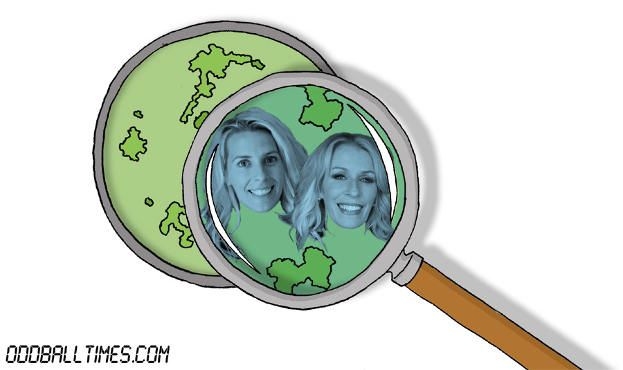 A cartoon of a Petri dish with Sara Pascoe and Sara Dallin inside. By Oddball Times