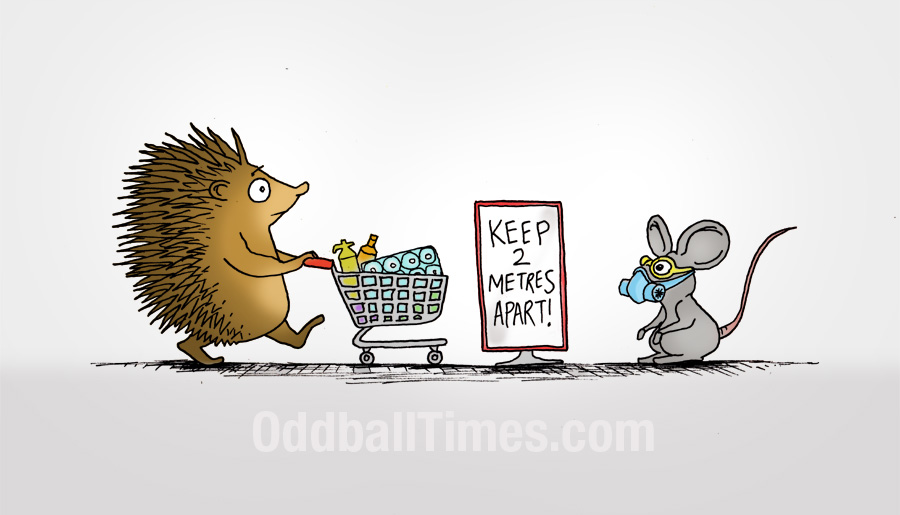 A cartoon of a hedgehog going shopping during the COVID-19 crisis