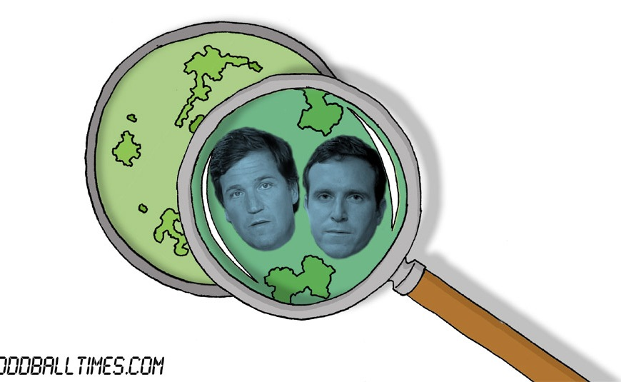 A cartoon of a Petri dish with Tucker Carlson and Ed Conway inside. By Oddball Times