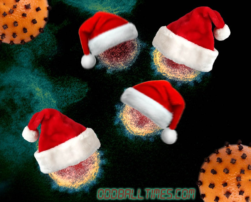 Coronavirus wearing santa hats alongside oranges with cloves in them