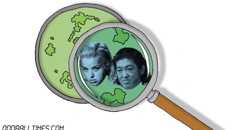 A cartoon of a Petri dish with Diana Dors and Heo Sung-Tae inside. By Oddball Times